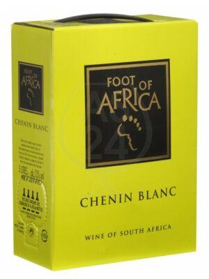 Foot of Africa Chenin Blanc Bag in Box 13% 3,0l